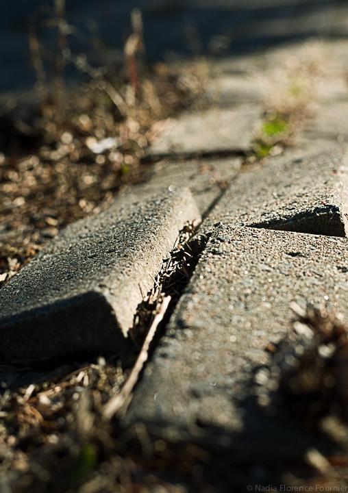 20131103-2-PavingStones